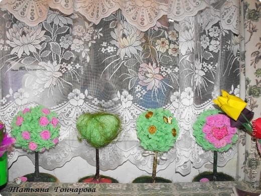 """Мои деревца. Первое сторцевалось это,классическое розовое!  Шарик из туалетной бумаги, смоченной водой, клея ПВА, в общем из того что было под руками! потом сверху гофробумагой зеленой, и уже сверху розочки и зелень.  Стволик из бамбуковых шампуриков,"""" покрашенных """" гипсом, оказывается ,гипс при покраске сламывается прямо под кисточкой,и такая красивая деревянная структура мне не удалась, но учитывая что это первые деревца, мне понравилось, и опыт хороший)). Подставочка-тоже гипс в пластиковой обычной тарелочке, поле застывания перевернула, и низ зашкурила. завтра буду клеить на низ тканюшку , чтоб вид был поэстетичней))).  покрасила краской, бочкА у подставки задуты золотым спреем из баллончика, по краю декор зеленым сизалем. остальные по тому же принципу, разница в декоре. фото 4"""