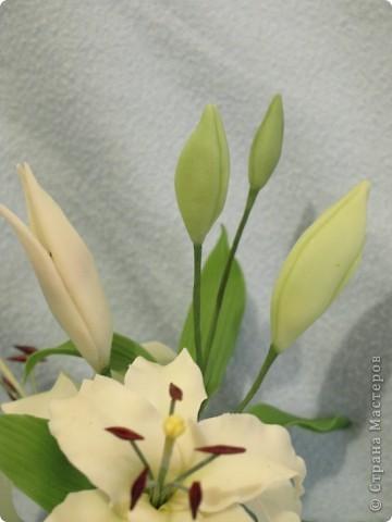 Выставляю на Ваш суд новую лилию, выполненную на заказ фото 8