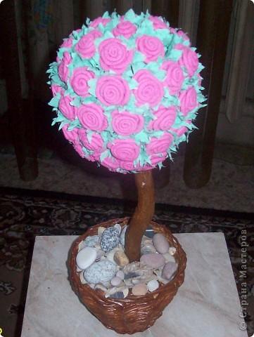 Наконец я тоже вырастила розовое дерево. Спасибо Олисандре за ее МК. фото 2