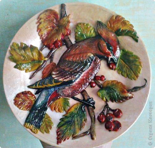 Свиристель (панно на тарелке). фото 2