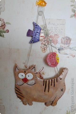 Кошки -повторюшки )) фото 2