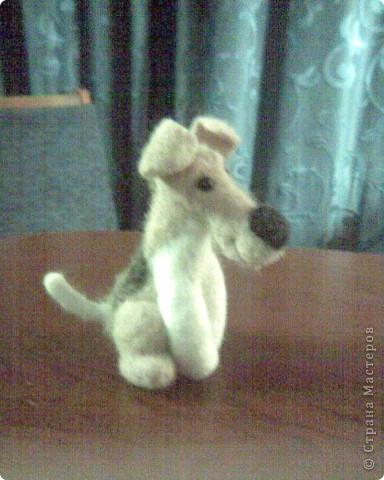 Медвежонок Блинчик)) Самый первый, немножко комом, отсюда имя:) фото 4