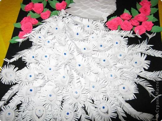 Альбинос по МК ольги Ольшак фото 4