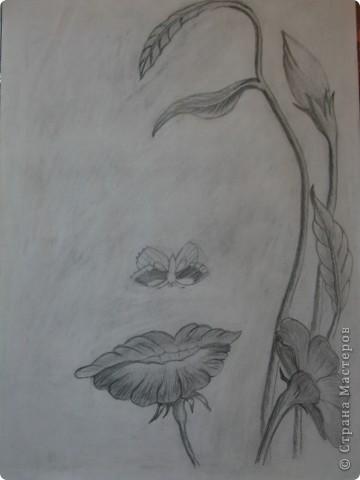 первые рисунки карандашом фото 7