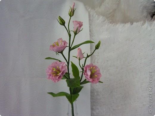 Слепила второй цветочек эустомы, остался ещё один для завершения букета. фото 2