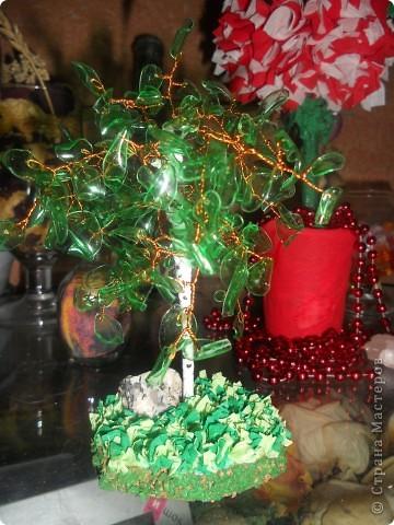 вот такое деревце из пластиковой бытулки у меня получилось. Это мое первое дерево, не судите строго))) фото 2