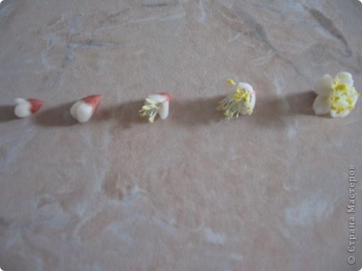 Вот такие цветочки слепила из остатков ХФ. фото 2