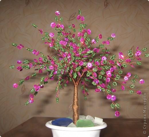 Весеннее дерево. фото 1