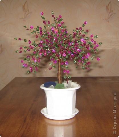 Весеннее дерево. фото 3