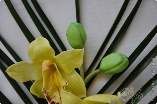 Ох, девочки... Хоть к орхидеям я равнодушна -не смогла устоять против появившейся в доме на 8 марта живой, огромной ветки орхидеи Цимбидиум(я даже сорт узнала))) Села лепить...без молдов, каттеров и остальных страшных названий - что называется наобум) Даже не знала что получится - поэтому сделала минимум цветочков... Ну а что получилось - решать Вам... фото 4