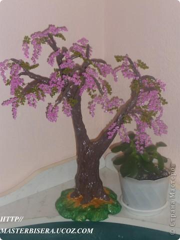 Дерево из бисера и гипса Сакура. http//masterbisera.ucoz.com