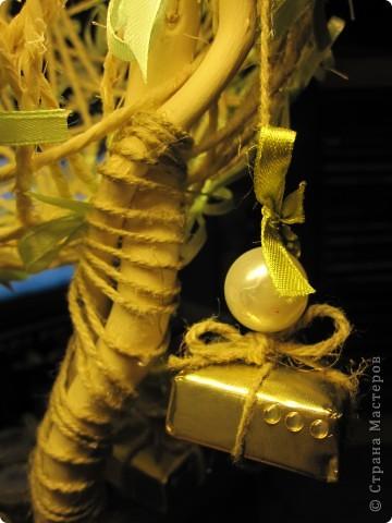 Подвесные  сладкие плоды*) фото 2