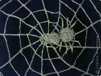 Паучок в серебряной паутине.Приносит удачу и богатство в дом. фото 1