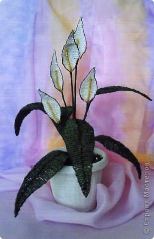 Как сделать цветок женское счастье из бисера