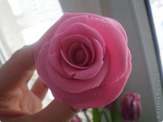 Я восхищаюсь работами местных мастериц, которые лепят цветы из фарфора. сама я никогда с фарфором не работала, как-то побаиваюсь пока, почему- сама не знаю. А вот набралась наглости и смастерила розу из солёного теста. Благодарю за МК kukushechka фото 1