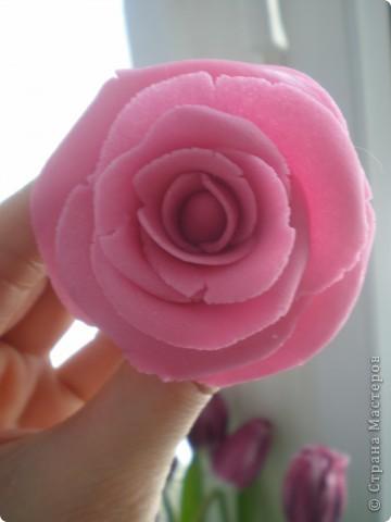 Я восхищаюсь работами местных мастериц, которые лепят цветы из фарфора. сама я никогда с фарфором не работала, как-то побаиваюсь пока, почему- сама не знаю. А вот набралась наглости и смастерила розу из солёного теста. Благодарю за МК kukushechka фото 2