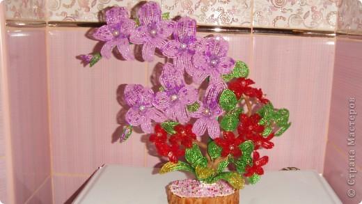 Вот такую орхидею сделала  в школе бисероплетения Маргариты Черепановой. Первый опыт в цветочных композициях фото 2