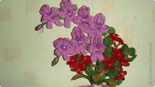 Вот такую орхидею сделала  в школе бисероплетения Маргариты Черепановой. Первый опыт в цветочных композициях фото 3