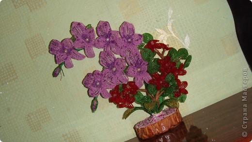 Вот такую орхидею сделала  в школе бисероплетения Маргариты Черепановой. Первый опыт в цветочных композициях фото 1