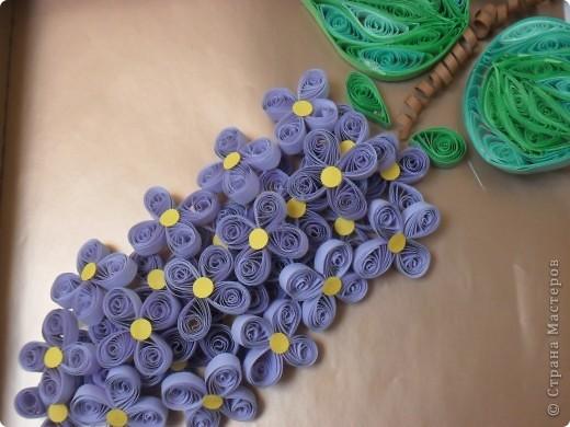 Долго думала, что же это за цветы... и решила, что это георгины... фото 3