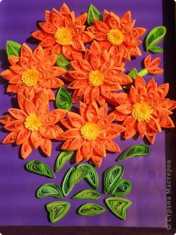 Долго думала, что же это за цветы... и решила, что это георгины... фото 1