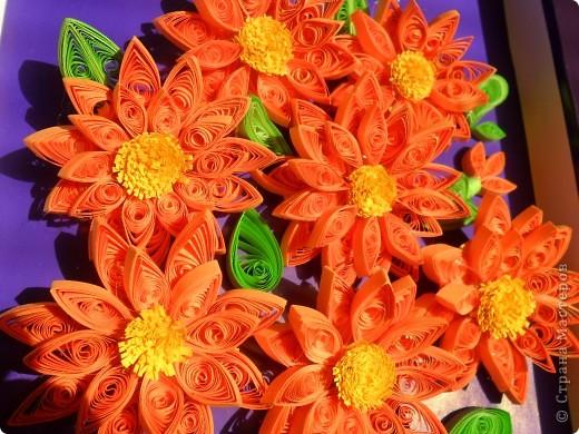 Долго думала, что же это за цветы... и решила, что это георгины... фото 4