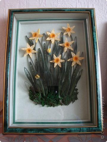 """Нарциссы. Мои первые цветы в технике квиллинг. Затем я сделала """"Сакура на фоне музея"""". фото 1"""