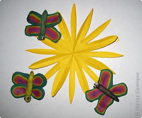 Солнышко пригревает, бабочки прилетают!