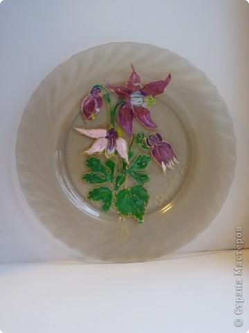 Тюльпаны. фото 3