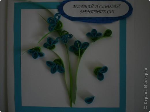 Одна болгарская роза фото 4