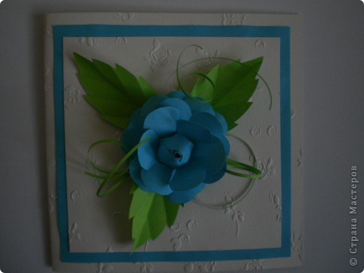 Одна болгарская роза фото 2