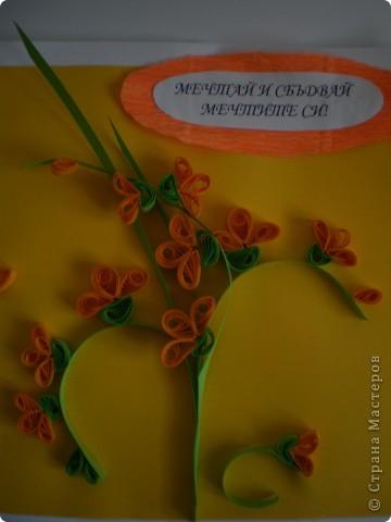 Одна болгарская роза фото 6