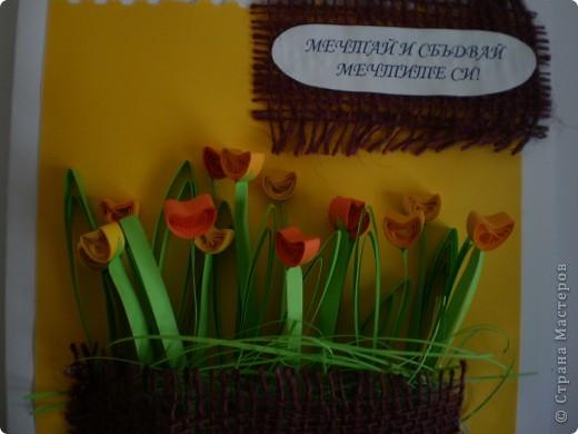 Одна болгарская роза фото 3