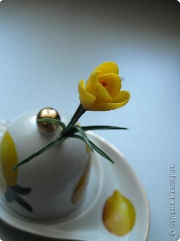 Вдохновившись работами Светланы, я начала работу над эустомами) Честно говоря мне очень нравится этот цветок. А вот то, что получилось) фото 4