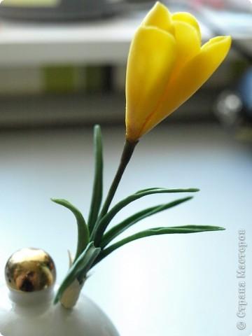 Вдохновившись работами Светланы, я начала работу над эустомами) Честно говоря мне очень нравится этот цветок. А вот то, что получилось) фото 5