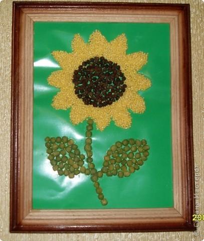 Поделки из семечек подсолнуха для детей 10