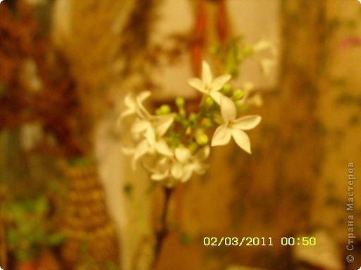 По мотивам Экзотики http://stranamasterov.ru/node/159193?c=favusers хотела накрутить кису девочку со скакалкой,Даня сказал это ниндзя маскируется;хулиганка получилась... фото 9