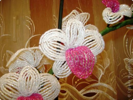 орхидея из бисера фото 3