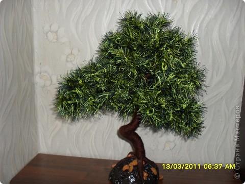 Дерев о из ниток, спасибо за мастер-класс автору статьи Юлия Часовских. фото 2