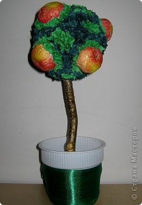 Яблочки из бумажных салфеток. Подкрасила акрилом для батика. Результат мне понравился. фото 5