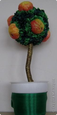 Яблочки из бумажных салфеток. Подкрасила акрилом для батика. Результат мне понравился. фото 6