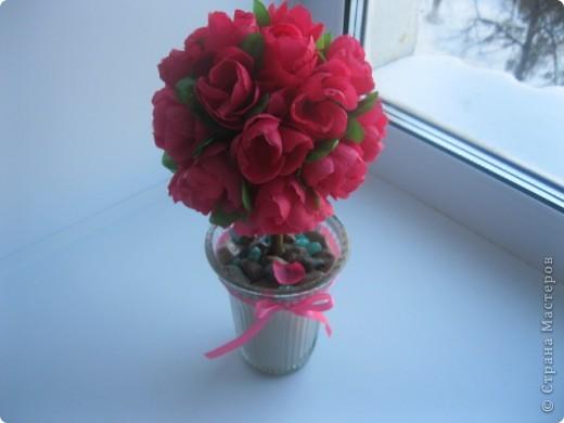 Розовое дерево фото 1