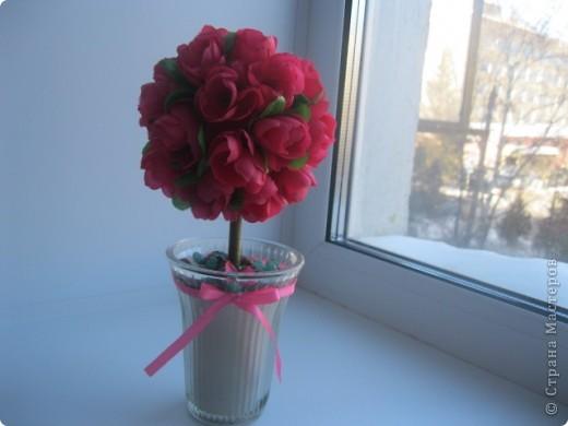 Розовое дерево фото 3