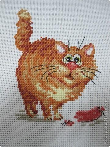 Этого котЭ подарила подружке) Схема вот тут: http://photofile.ru/users/olgytochka/150965757/167316425/ фото 1