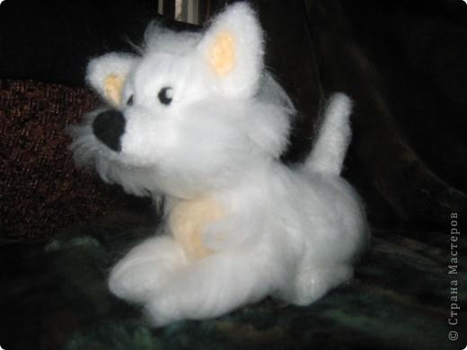 вот такая собачка родилась у меня сегодня фото 3