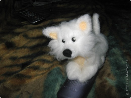 вот такая собачка родилась у меня сегодня фото 5