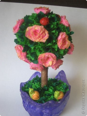 Мои деревца фото 2