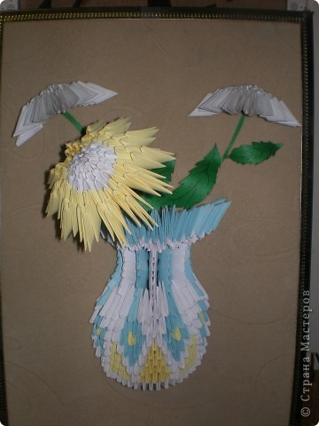 Цветущий кактус фото 3