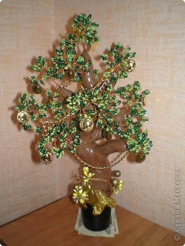 У лукоморья дуб зеленый...... вот таким я его и увидела.