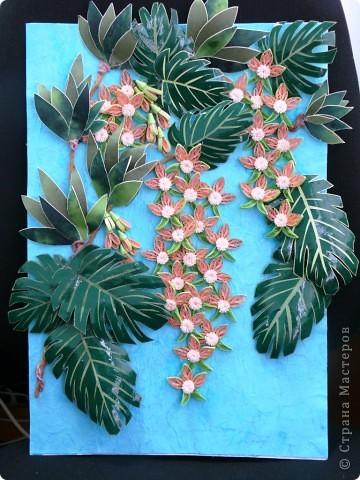 Вот и у меня теперь появились орхидеи в тропиках. Очередная работа с курсов Ольги К. Спасибо ей большое. Опять работа пока без рамки, не могу ждать, не терпится поделиться с вами. На белом фоне... фото 2